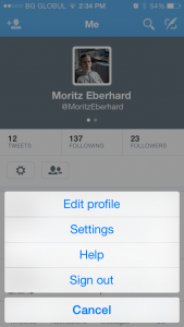 User screen of the Twitter mobile application