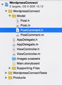 Project structure after adding model classes (objective-c tutorial)
